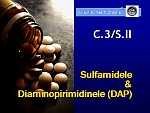 C3-SII.jpg